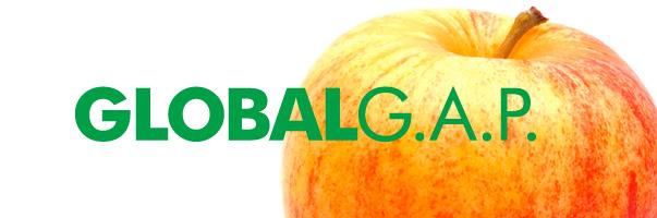Зрада по-украински: «червивые» яблоки покоряют Европу